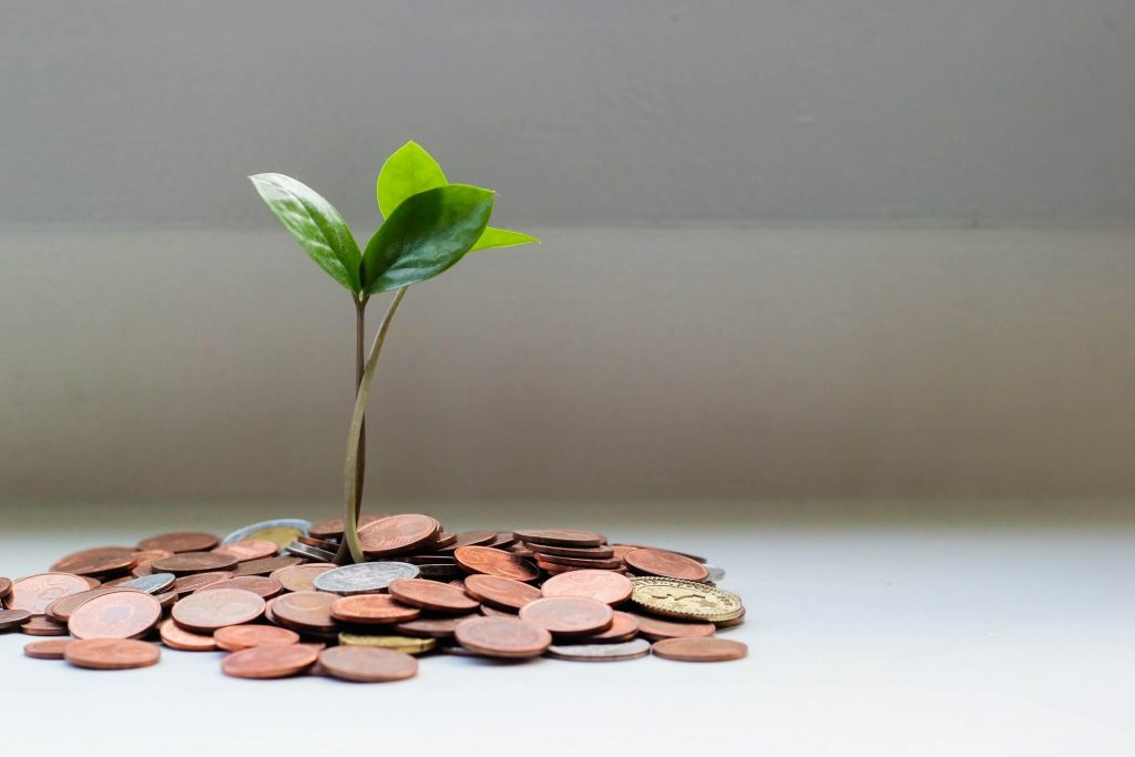 the first wealthchakra is passive income, pile of coins growing a small plant